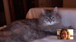 FaceTime with Misty