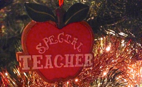 special teacher feature